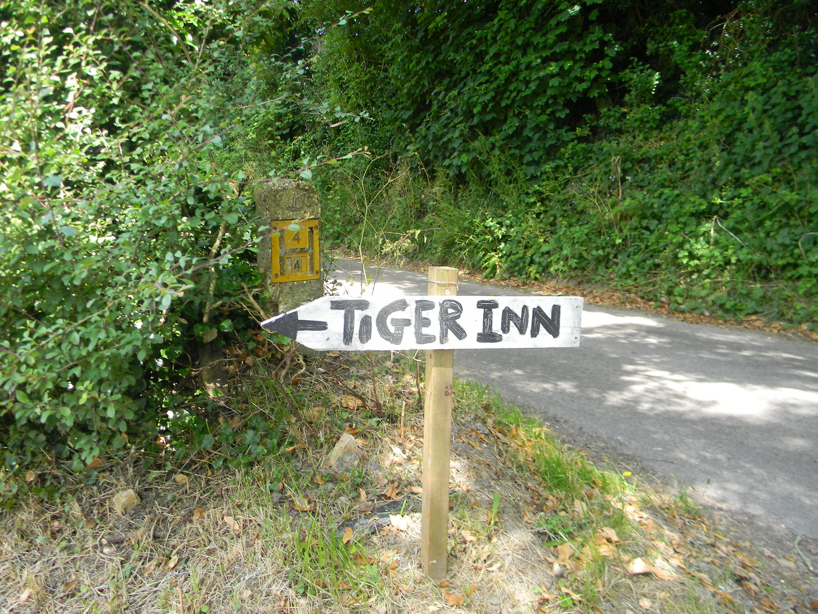Tiger sign Sandling to Wye