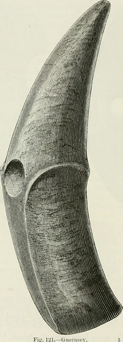 "Image from page 187 of ""The ancient stone implements, weapons, and ornaments, of Great Britain"" (1872) 