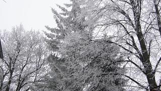 snowy winter in bulgaria 33
