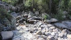 Dans le ruisseau de Maghine à la confluence Sposata (photo Victor Gomis)