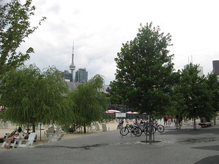 Trees of Sugar Beach: Toronto, Ontario 2011 | by DeepRoot Green Infrastructure