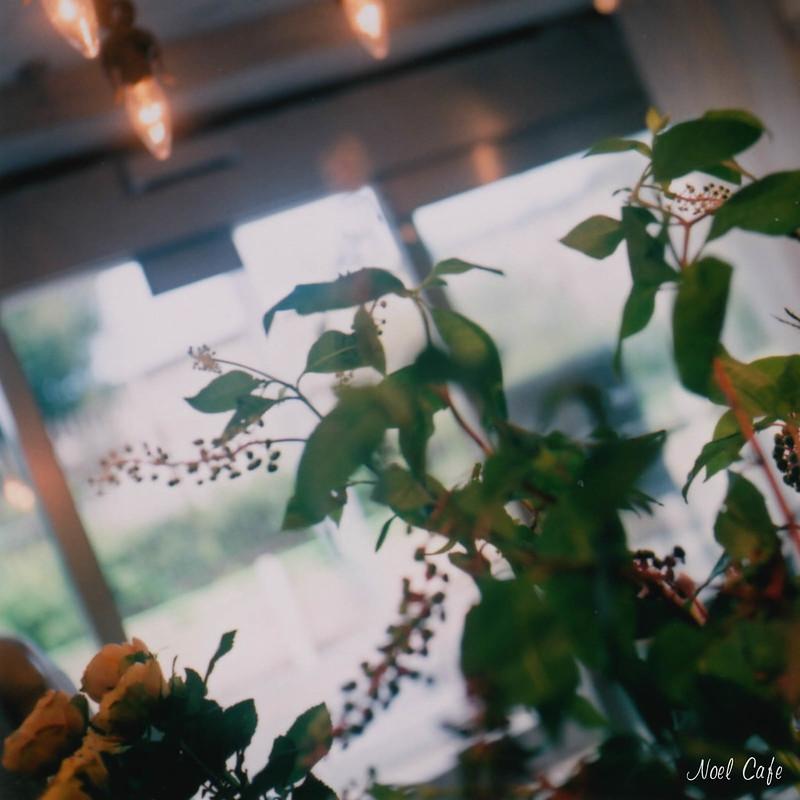 ぶどうの気配 3 by Noël Café
