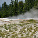 Shelf Spring (Pink Cone Group, Lower Geyser Basin, Yellowstone Hotspot Volcano, nw Wyoming, USA)
