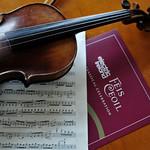 12. Violin still
