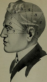 """Image from page 90 of """"Brains and how to get them"""" (1913) 
