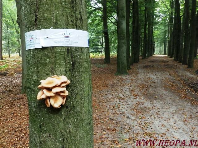 Baarn                13-09-2014        40 Km   (6)