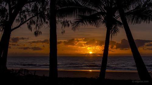 beach sunrise dawn sand paradise australia palmtrees queensland tropical tasmania portdouglas 61 nikond3200 edgetas abcedge