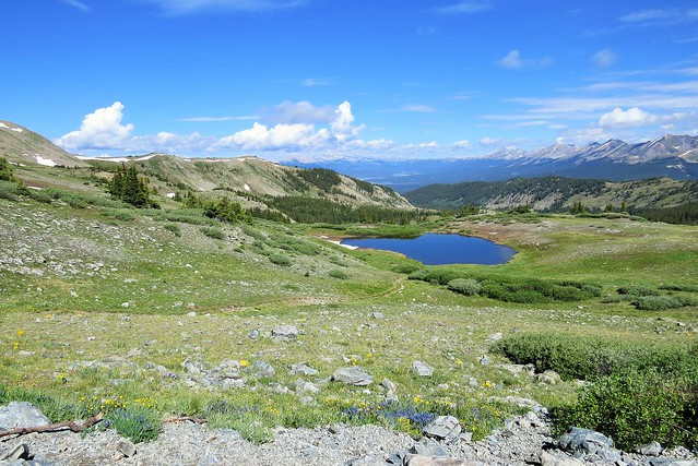 View to the West from Cottonwood Pass