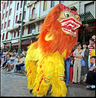 Traditional Chinese Lion Dance, Queensland Day celebrations at China Town, Fortitude Valley, Brisbane City, 6 June 1987