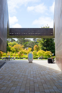 Architecture of the DeYoung Museum | by itcrashed