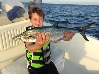 Photo of Boy holding a Spanish mackerel