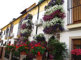 Balcones Córdoba