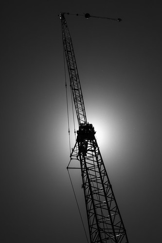 The Crane   by -Harm-