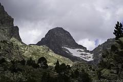 Pico Palas