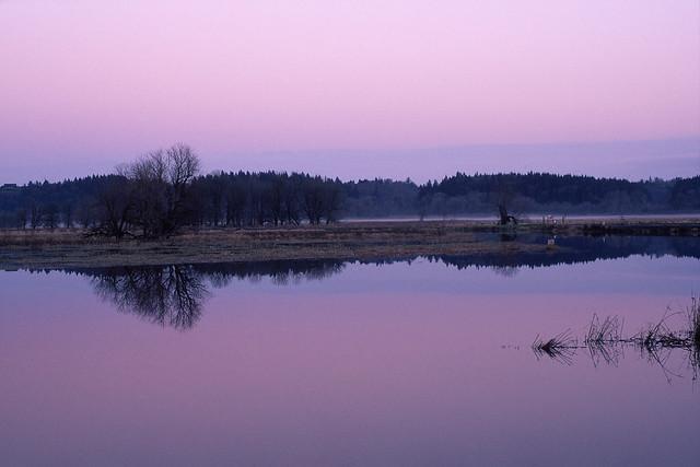Evening Symmetries