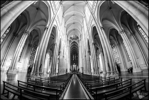 Catedra,-vista-entera | by musigraphist