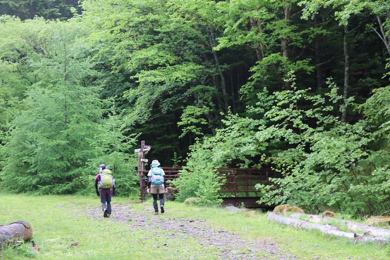 2014-06-29_00043_天狗岳.jpg