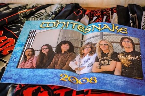 Whitesnake (30)