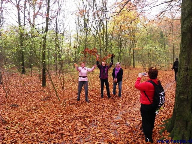 17-11-2012 Wassenaar 25.8 Km (93)