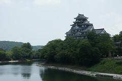 Castillo de Okayama