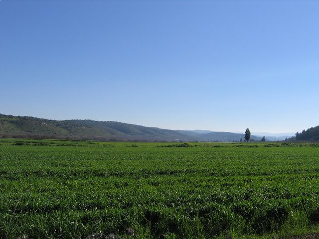 Jobs In Bet Shemesh: Off Of Route 38 Near Bet Shemesh