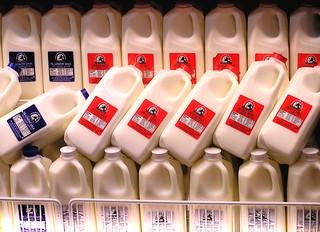 milk | by Muffet
