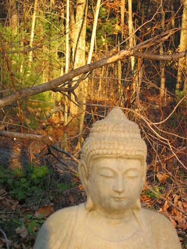 sunset statue garden 1 buddha ims