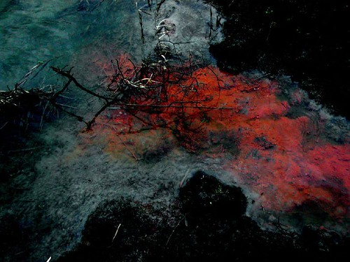 a (polluted?) stream, | by suncana