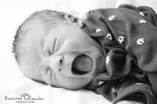 Baby Seth | by briannalouder
