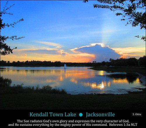park blue trees light sunset orange usa lake reflection water grass silhouette clouds america evening town us twilight florida dusk united jacksonville fl states kendall sunbeam
