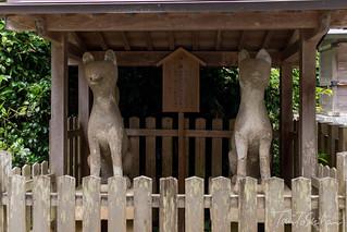 松江市 城山稲荷神社 (Jozan Inari Shrine,Matsue) | by Tony Tani