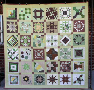 Finished Skill Builder Sampler quilt
