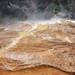 Dryad Spring (Mammoth Hot Springs, Yellowstone Hotspot Volcano, nw Wyoming, USA)