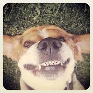 be happy!!!!!!! | by Pedro Baez Diaz @pedrobaezdiaz