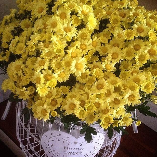 Bom Dia Feliz Sábado De Primavera Que Além Das Flores E