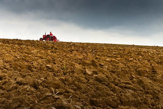 A vintage tractor, ploughing on the horizon | by Winniepix