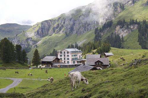 Engstlenalp, Switzerland