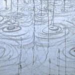 """Rain Season"" Wuhan 2014 ink on paper 50 x 70  cm China"