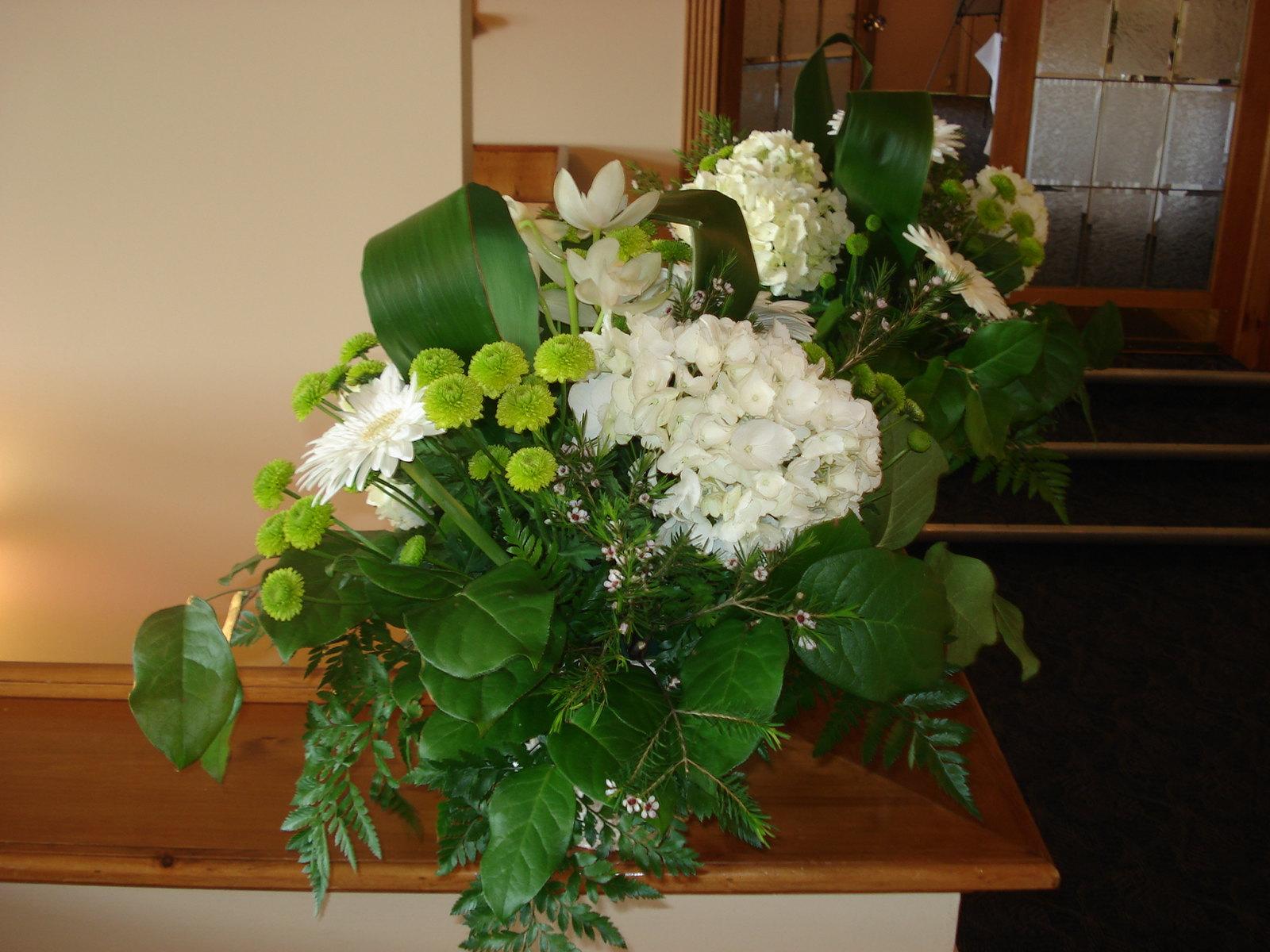 Farah Florist W-CP-13.     $45-55