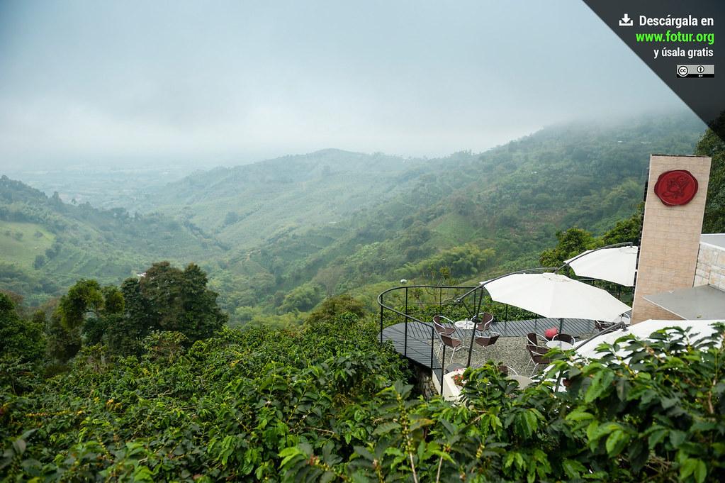 Terraza De San Alberto Buenavista Eje Cafetero Colombia