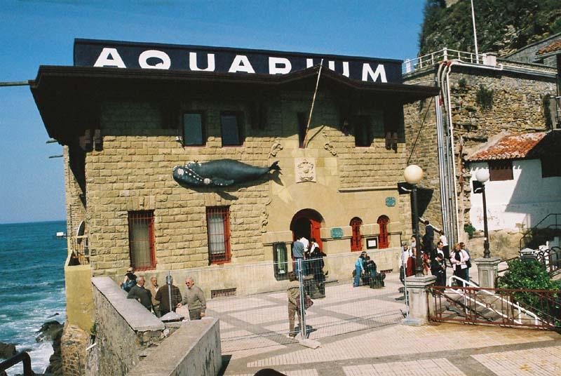 SS10 - Aquarium