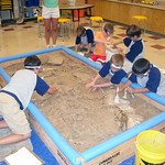 Fri, 06/23/2006 - 11:03am - Dinosaur Detectives Summer Day Camp