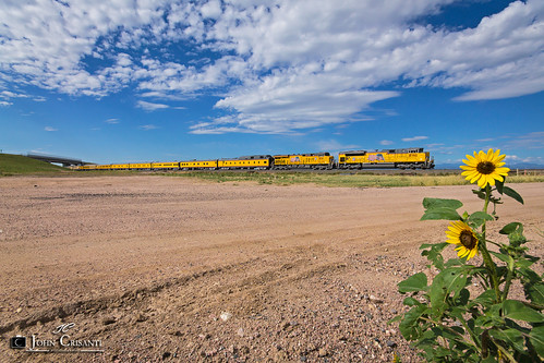 railroad train colorado railway trains unionpacific passenger railfan railroads railfanning passengercars coloradorailroads emdsd70ace coloradotrains gees44ah
