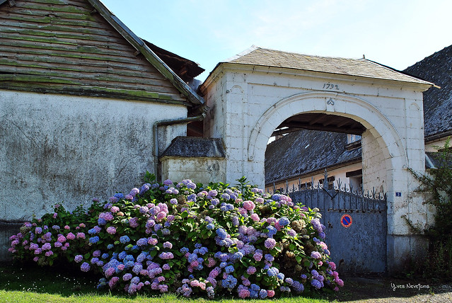 DSC_3457 village de Barly