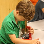Mon, 06/09/2014 - 11:02am - Sea Science Summer Day Camp