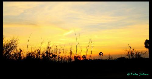 sunset beach landscape golden dusk hour hdr canon1000d