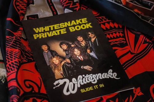 Whitesnake (16)