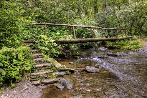 summer canon eos nationalpark woods footbridge northcarolina hike explore trail greatsmokymountains cataloochee logbridge explored 60d canon60d canoneos60d flutterbye216