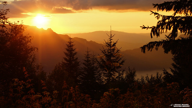 # France, Alpes du nord, Savoie, Bauges, la Feclaz, le Sire, coucher de soleil sur le lac du Bourget