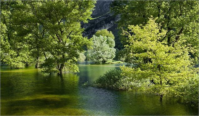 _MG_5971   Lago di Loppio Trentino / Italien